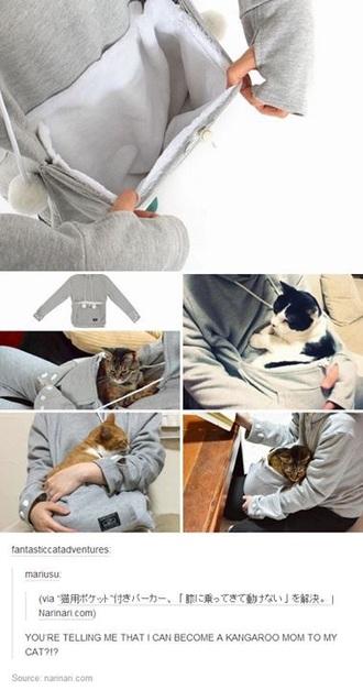 sweater cats cat shirt cat sweater cats pullover cat sweatshirt