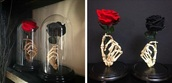 home accessory,hand,skeleton,vase,stand,flower vase