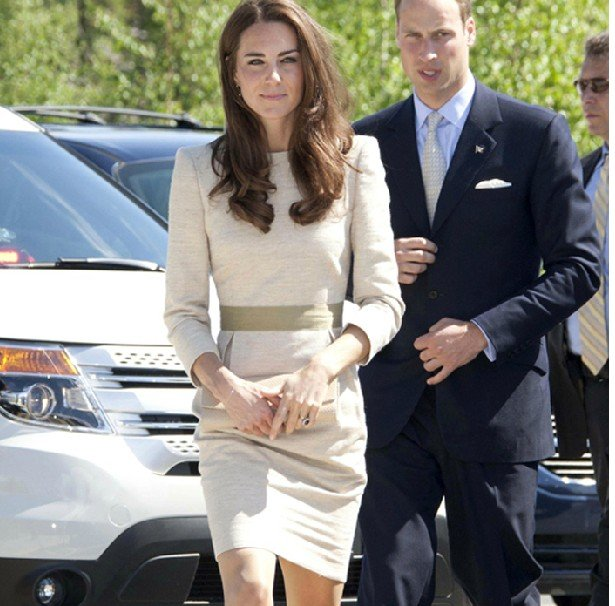 Hotte s kate middleton dress custom made royal slim dress no132