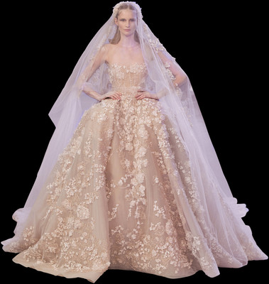 Elie saab haute couture spring summer 2014 for Haute couture members