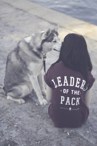 t-shirt dog leader leader of the pack burgundy wolf