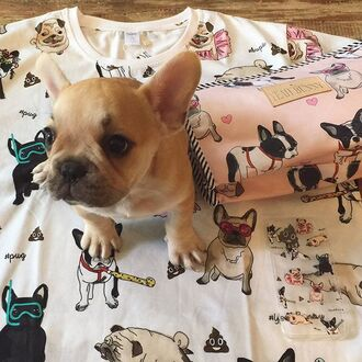 t-shirt yeah bunny dog pugs frenchie dog attack doggie