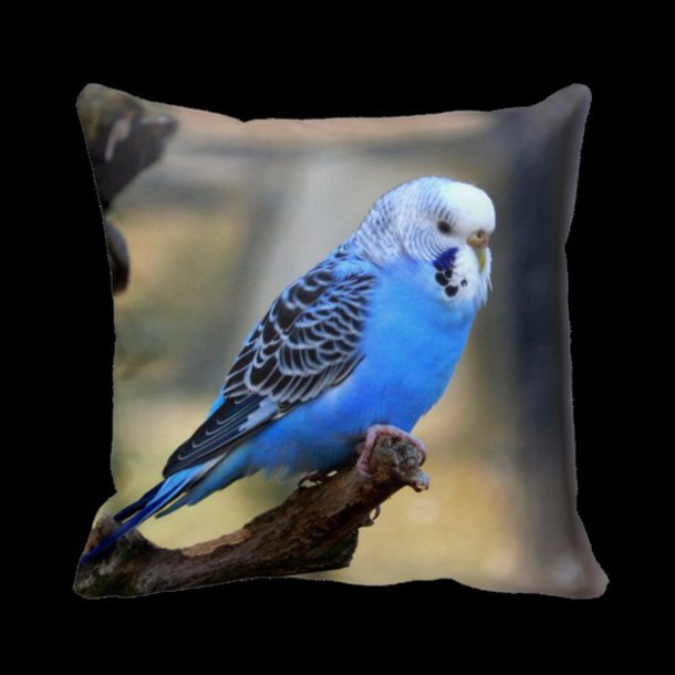 home accessory pillow budgie birds animal love gift ideas blue macro style