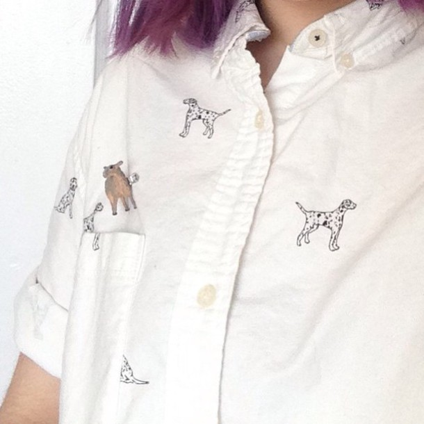 blouse oxfords dog