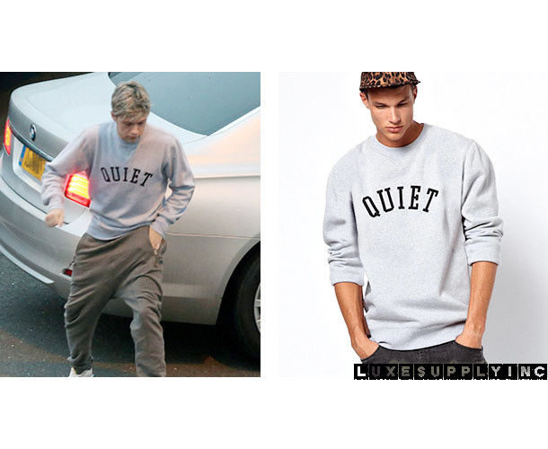 Cool quiet niall horan harry styles sweater