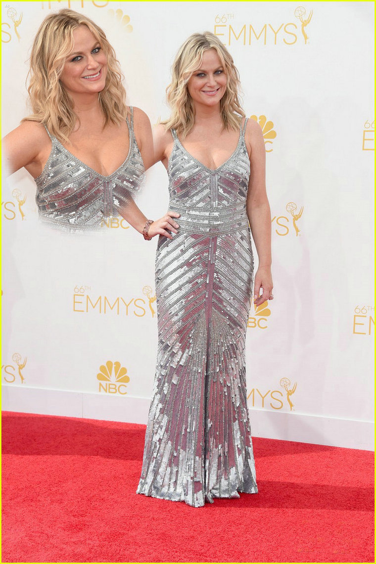 Aliexpress.com : Buy Luxury 2014 Amy Poehler Emmys Red Carpet Dress Sparkly Beaded Sequins Straps Silver Celebirty Dress Party Evening Elegant from Reliable party long suppliers on 27 Dress