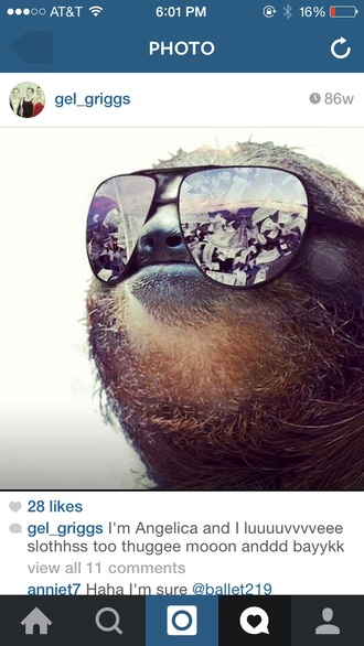 sunglasses sloth