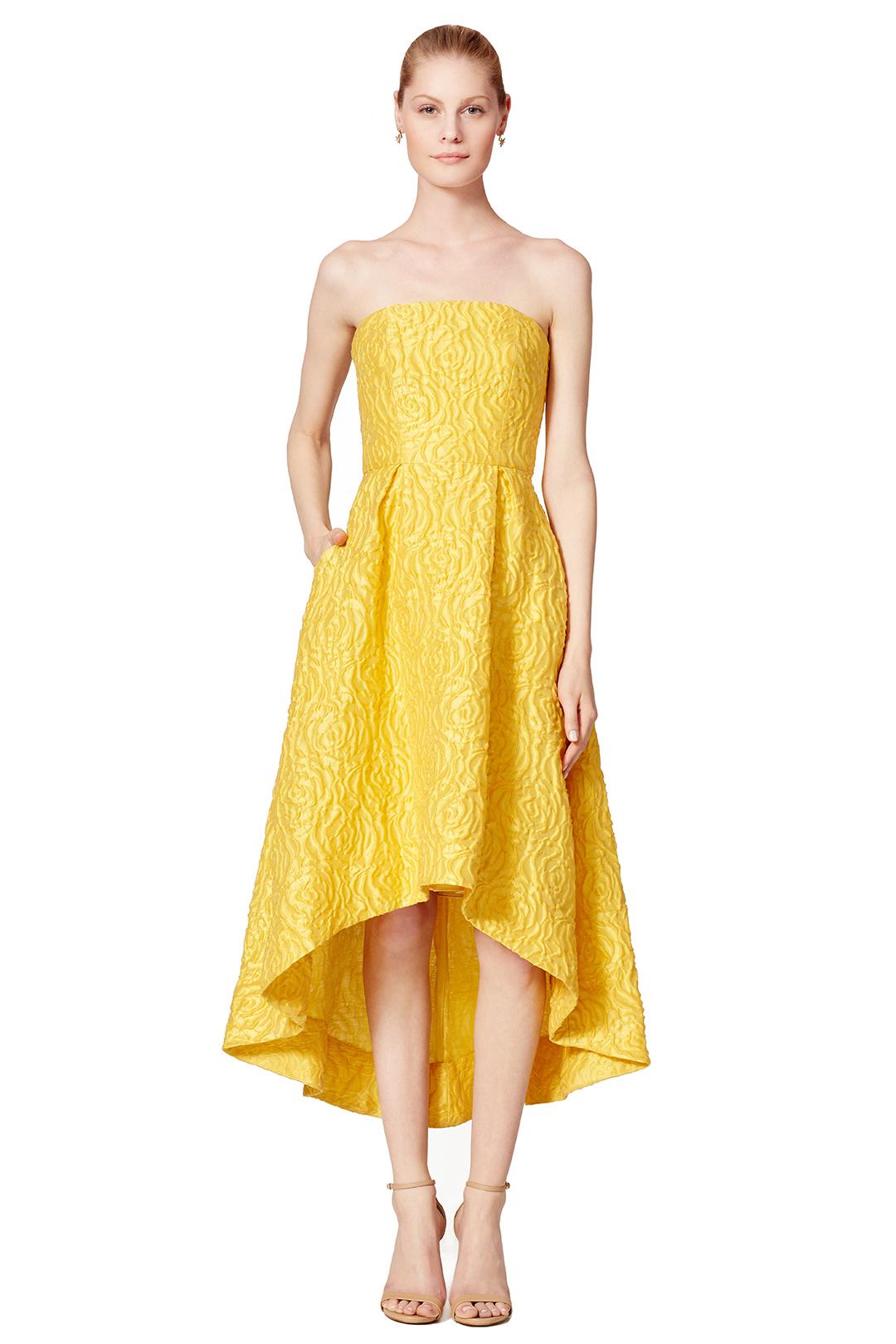 87f4fcec409b ML Monique Lhuillier Sunshine Day Gown