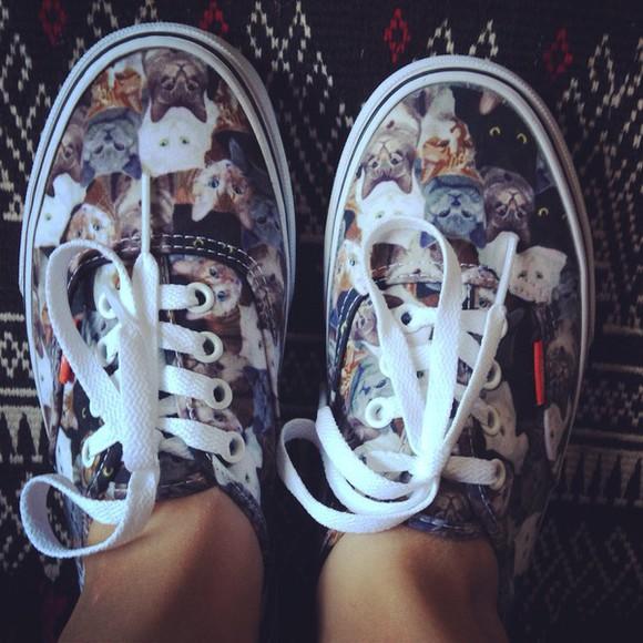 vans shoes cats