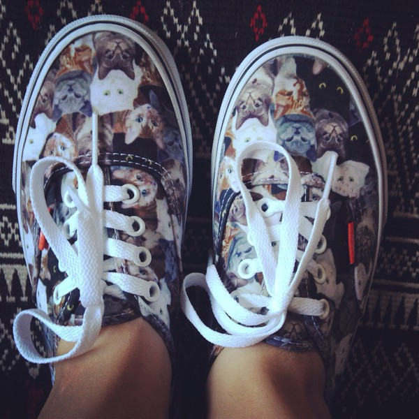 shoes vans cats