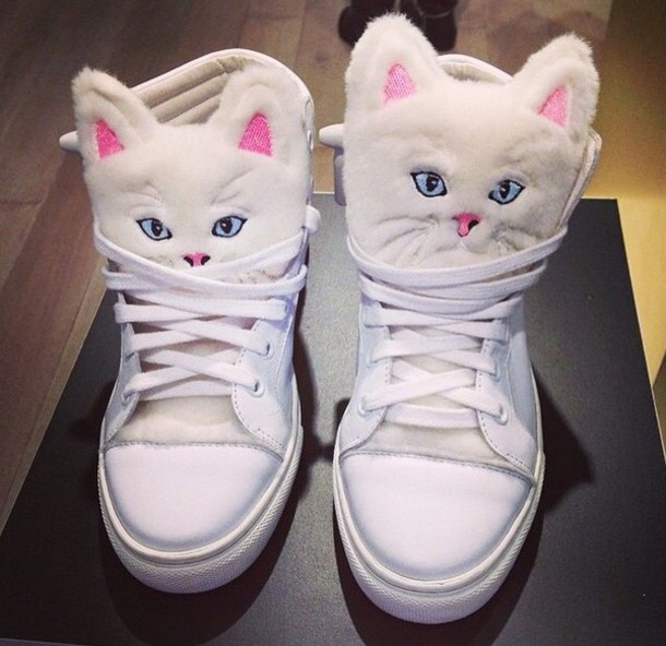 shoes cats