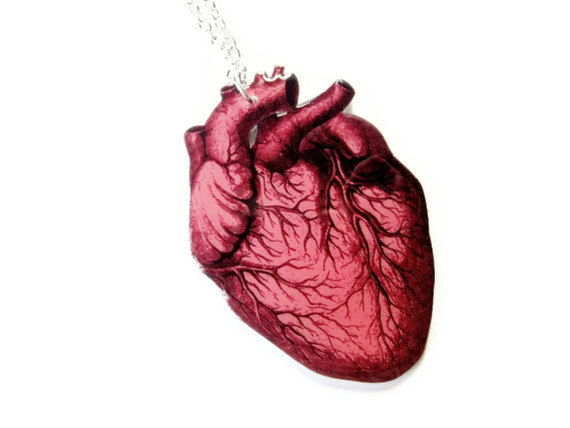 Anatomical heart necklace anatomy red vintage illustration medical jewelry statement love valentines day anatomically correct