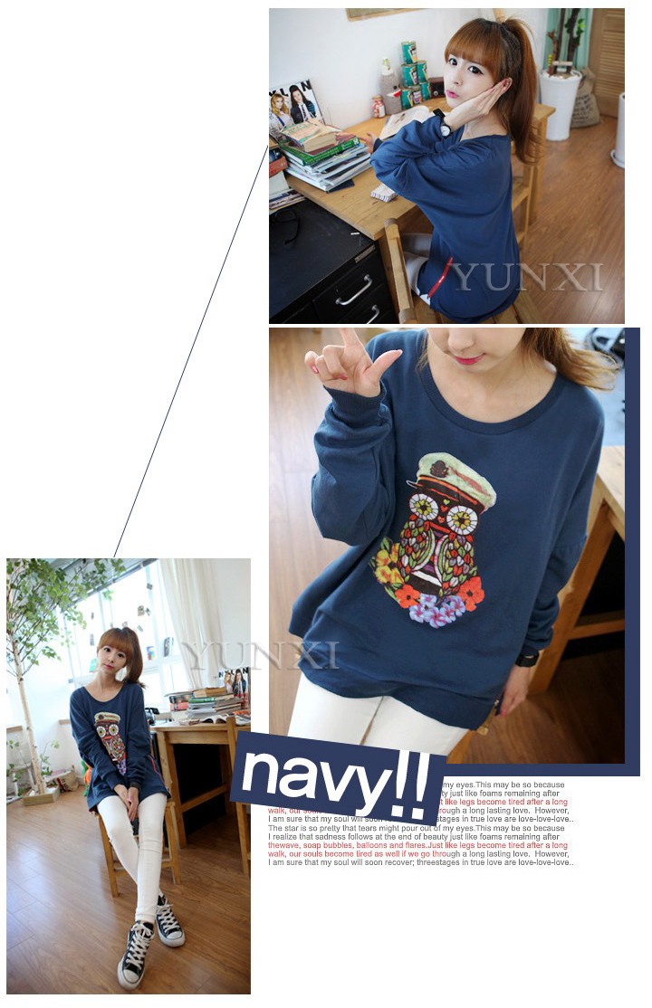 2013 loose o neck pullover cartoon owl female sweatshirtGD100P0001-inHoodies & Sweatshirts from Apparel & Accessories on Aliexpress.com