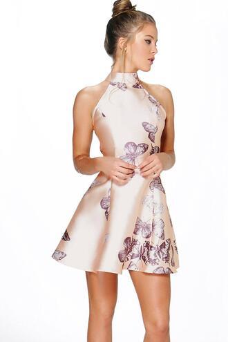 dress blush dress butterfly print butterfly print dress flare dress