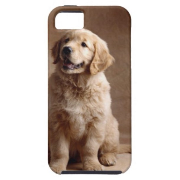 phone cover golden retriever puppy iphone 5c casese