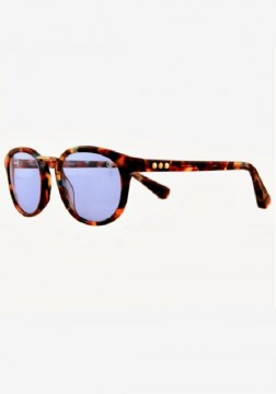 Taylor Morris - Vredefort Sunglasses Tortoiseshell at Beach Cafe UK