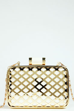 Liza Caged Metal Box Clutch Bag at boohoo.com