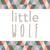 NERD Shorts  |   Little Wolf Vintage
