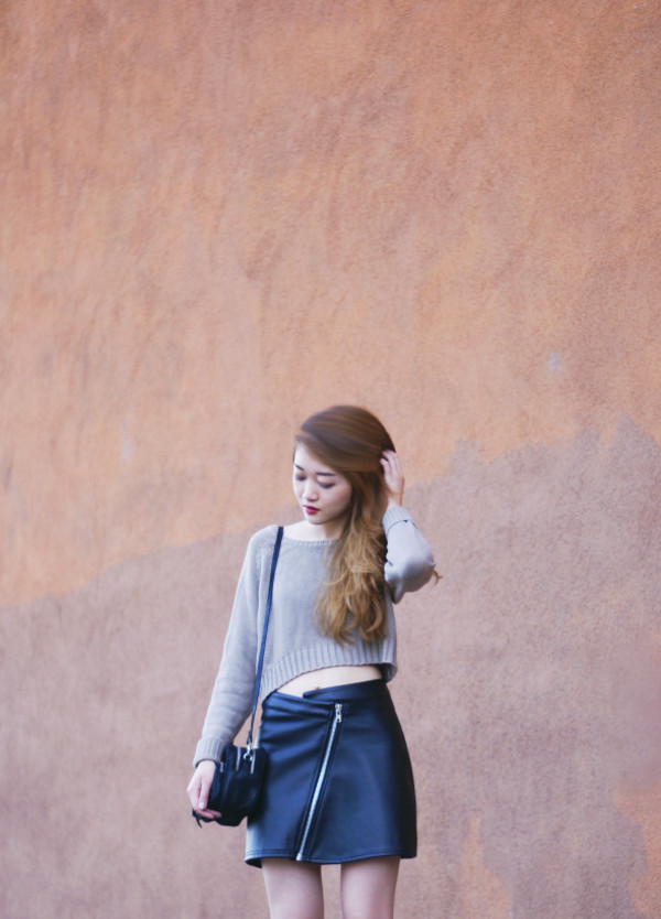 rouge fox sweater skirt bag