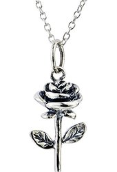 Amazon.com: 14k Yellow and Rose Gold Rose with Stem Pendant Necklace: Jewelry