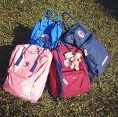 bag,pink,fjallraven kanken,backpack