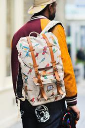 bag,backpack,colorful,herschel little america backpack,parrot,tropical,menswear,herschel supply co.,birds