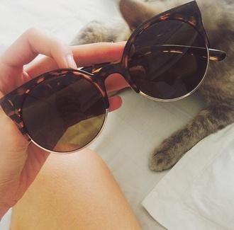 sunglasses black brown cat eye