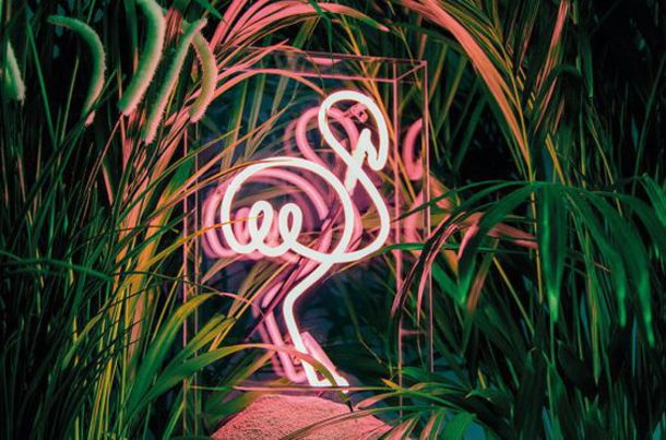 home accessory home decor neon light flamingo pink tropical lamp