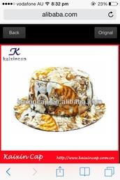 hat,cats,bucket hat,indie