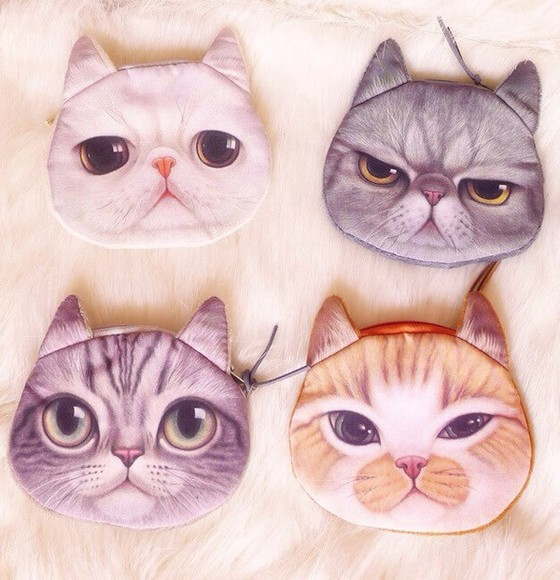 cats cute cat bag pretty purses lovely meow weird