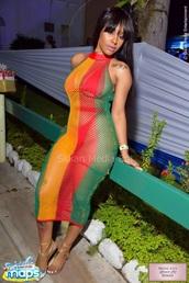 dress,colorblock,mesh dress,midi dress,multicolor,summer dress