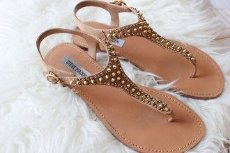 shoes flast shoes studds sandals flats flat sandals gold studded shoes steve madden brown brown shoes brown sandals gold shoes summer summer shoes hot
