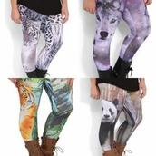 pants,leggings,springtime,plus size,debshops