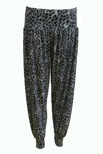 Fydor Leopard Print Hareem Pant - Pop Couture