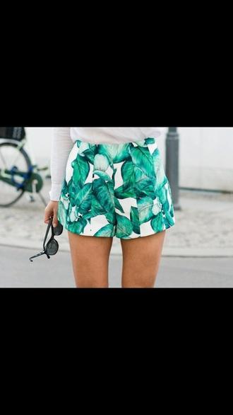 shorts white leaves tropical print shorts leaves printed