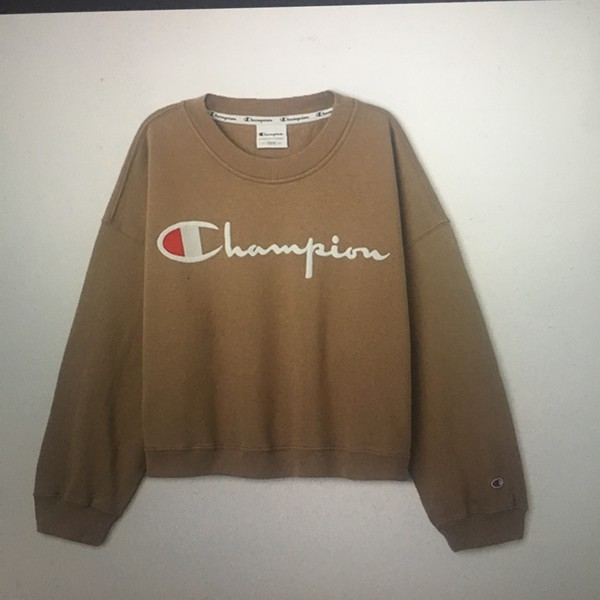 Sweater Champion Champion Sweater Nude Nude Sweater