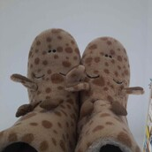 slippers,house slippers,vintage,hipster,iloveit,barcelona,pickoftheday,photooftheday,giraffe,oysho