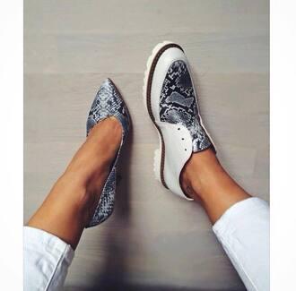shoes snake print