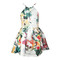 Chic winter wind botanical print skater dress