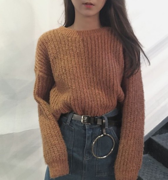 Sweater: tumblr, jumper, fall sweater, fall colors, brown ...