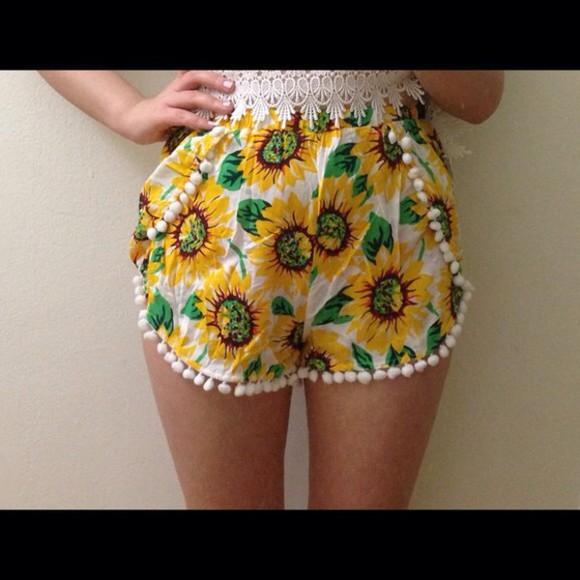 daisy sunflower pom pom su flower pompom