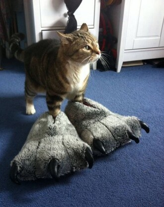 shoes slippers monster monsters monsterfeet beast feet foot pajamas tumblr fluffy cute cool