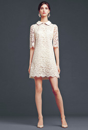 collar,pattern,high heels,dolce and gabbana,hipster wedding,collared dress,lace dress