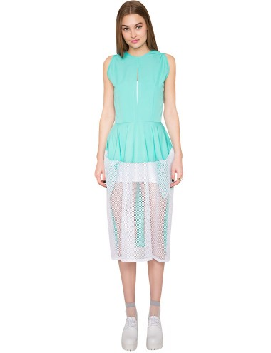 Mint Net Mesh Dress - Cute Summer Dresses - Farahbella -$298