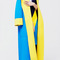 Cerulean eltham coat by roksanda ilincic | moda operandi