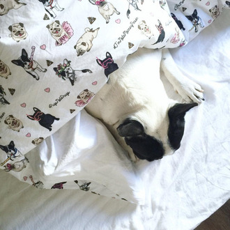 home accessory yeah bunny bedding dog cute comfy pugs frenchie cotton pillow