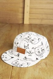 hat,кепка,snapback,truckerhat,funny,cats,white,cap,5 panel,5 panel cap,cute,tumblr,fluffy,soft,summer,winter outfits,fall outfits,musthave,dress,cool,pussy