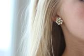 jewels,earings