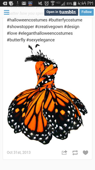 butterfly luly