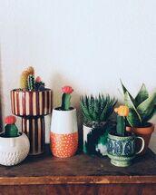 home accessory,plants,cactus,succulents,home decor,bedroom,living room,flower pots,boho